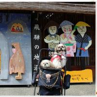 高山旅行🎶  Part2