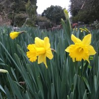 春爛漫な二日間