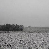 今年の長い冬(3) ASKAの反権力闘争
