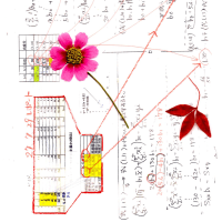 EXCEL関数(LINEST関数)を使って 予測値を発掘しよう