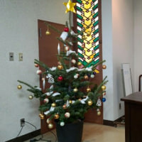 明日、クリスマス会!!