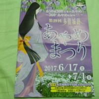 多賀城あやめ祭り