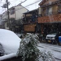 雪の逆襲!