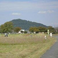 奈良 藤原京跡 & コスモス畑を訪ねて