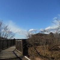 県民の森で坂道ラン