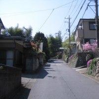 甲州街道を歩く-小仏から藤野まで その11