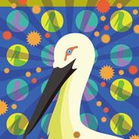16年11月28日鳥イラスト作品。AdobeのIllustrator。