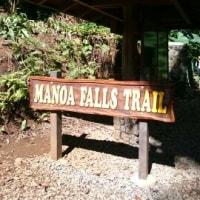 MANOA FALLS TRAIL☆マノアの滝へ