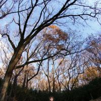 2014/12/14 TS �ӿ夵�餵���prologue��