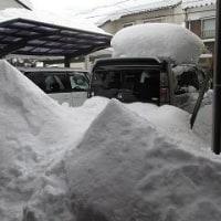 30年以上ぶりの大雪