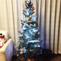 クリスマスツリー 出しました!