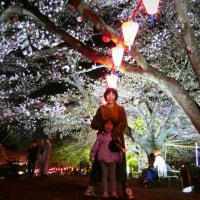 黒磯公園桜とタイラーメン