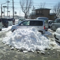 連日の雪   #1450