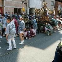 三社祭りIN浅草2017 『拍子木に神輿も踊る江戸の初夏』