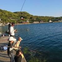 17.4.23(日)  チヌ釣り?