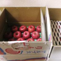 大凶作のリンゴが届きました