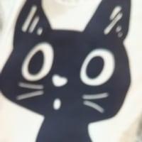 34・猫のほうもケ-ジから部屋に放し、首輪をつけて、外へ連れていき、私の白いお数珠の
