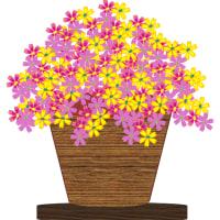 花々を描きましょう!