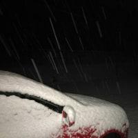雪   (-。-;