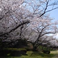 4月『水曜日』の会(4)