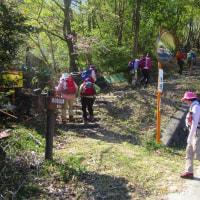 1 高陽山の会20周年記念桜へ給水  「木宗山」に