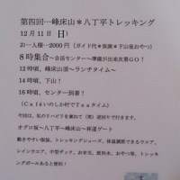 12/11トレッキング\(^o^)/♪