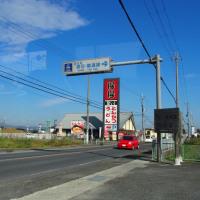 唐古・鍵遺跡の楼閣とコスモス(奈良県磯城郡田原本町唐古)