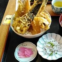 静岡市清水区 『大間 新栄丸』