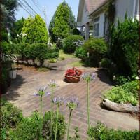 お花の療養所