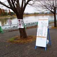 瓢湖、鳥インフルエンザの影響