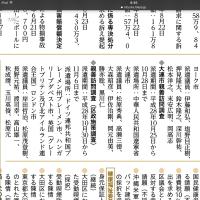 大田区議会海外視察の問題点