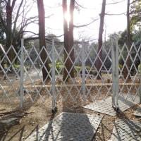 和田堀池 改修