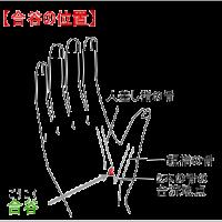 カラダのほぐし屋さん 宮崎駅前店 ツボの心 合谷