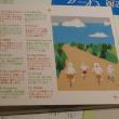 祝 あんみつ Paper Plane  💿発売!