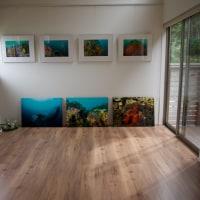 自然光の中の「海と森のギャラリー」