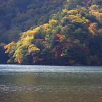 夏から秋へ 湖の謎