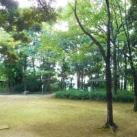 「続カタツムリ歩行」で南流山駅周辺を歩く(千葉)〈後半〉