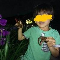 菖蒲祭りでザリガニと格闘