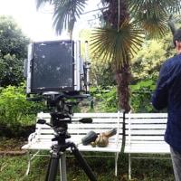 大型カメラ体験:8×10 & 4×5カメラでの撮影・現像 3daysワークショップ報告