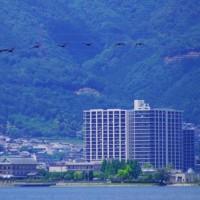 琵琶湖  夏の日
