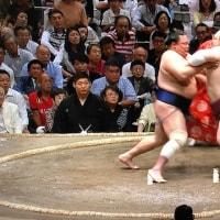大相撲五月場所中日