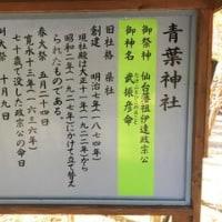 青葉神社(平成28年11月5日)