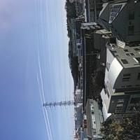 飛行機雲⁉地震雲⁉