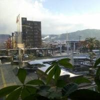 福岡、昨日初雪♪
