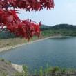 大淀川源流と中岳ダム