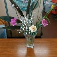 2月1回目の花
