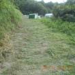 今年8回目の草刈り