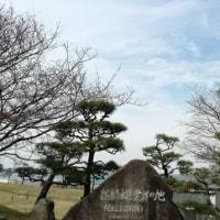 桜前線♪〜走水