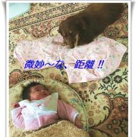 Rui&Choco・・・