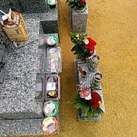 本日は枚方長尾へ墓参り。土を足してもらってきれいなお墓に。